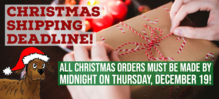 Thumb christmas website banner copy