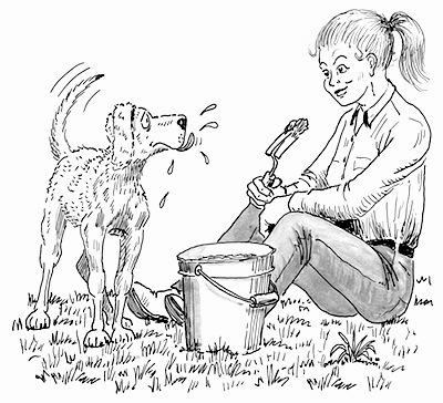 Illustration from hank 28