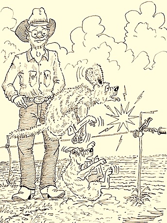 Hank 60  chapter 1 illustration